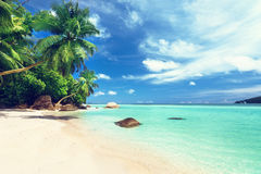 Spiaggia dell'isola di Catalina nella Repubblica dominicana immagini stock libere da diritti