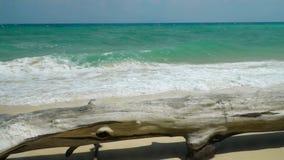 Spiaggia dell'isola di Poda, mare delle Andamane, Krabi Tailandia stock footage