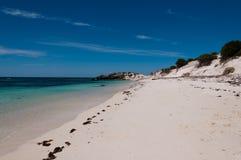 Spiaggia dell'isola di Rottnest immagini stock libere da diritti