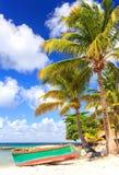 Spiaggia dell'isola di Saona Immagine Stock