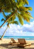Spiaggia dell'isola di Saona Immagini Stock