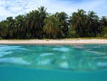 Spiaggia dell'isola di Zapatilla Immagine Stock