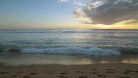 Spiaggia dell'oceano video d archivio