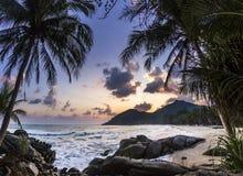 Spiaggia dell'oceano con la palma ad alba nell'isola di Phangan fotografia stock