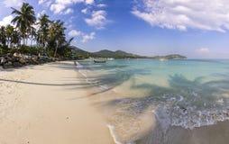 Spiaggia dell'oceano con la palma ad alba nell'isola di Phangan fotografie stock libere da diritti