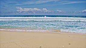 Spiaggia dell'oceano e grandi onde video d archivio