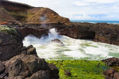Spiaggia dell'Oregon immagini stock libere da diritti