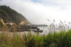 Spiaggia dell'Oregon Fotografia Stock Libera da Diritti
