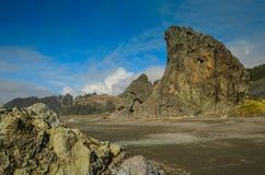 Spiaggia dell'oro, Oregon Fotografie Stock