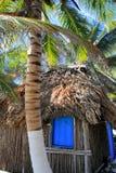Spiaggia della capanna di palapa delle palme della noce di cocco Immagini Stock