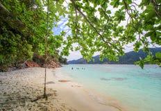 Spiaggia della copertura delle foglie vicino ad un bello mare Fotografia Stock Libera da Diritti