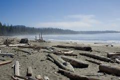 Spiaggia della Costa del Pacifico Immagini Stock Libere da Diritti