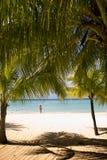 Spiaggia della Giamaica Immagine Stock