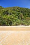 Spiaggia della giungla Immagini Stock Libere da Diritti