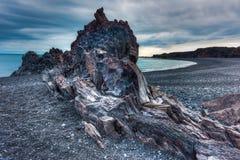 Spiaggia della lava, Islanda occidentale fotografia stock libera da diritti