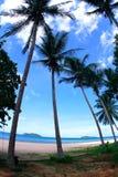 Spiaggia della noce di cocco Fotografie Stock