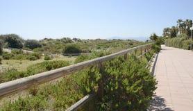 Spiaggia della passeggiata lungo la duna di sabbia Immagine Stock