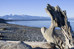 Spiaggia della regione selvaggia Fotografia Stock