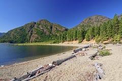 Spiaggia della regione selvaggia su un lago della montagna Immagini Stock Libere da Diritti