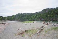 Spiaggia della riva del fiume Immagine Stock
