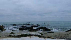 Spiaggia della roccia di inverno video d archivio