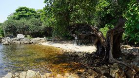 Spiaggia della roccia nell'isola immagini stock