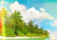Spiaggia della sabbia con le palme Cielo blu soleggiato con le perdite leggere e Fotografia Stock