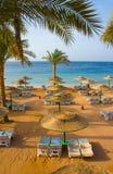 Spiaggia della sabbia dell'hotel tropicale Fotografia Stock Libera da Diritti