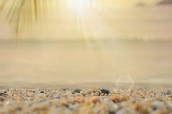 Spiaggia della sfuocatura con fondo astratto di foglia di palma Fotografia Stock Libera da Diritti