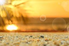 Spiaggia della sfuocatura con fondo astratto di foglia di palma Immagine Stock