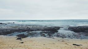 Spiaggia della spuma di Mollymook, Nuovo Galles del Sud, Australia Fotografia Stock Libera da Diritti