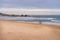 Spiaggia della talpa in Florianopolis, Santa Catarina, Brasile Immagini Stock Libere da Diritti