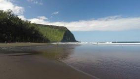 Spiaggia della valle di Waipio stock footage