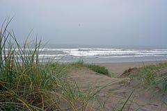 Spiaggia delle dune di Pajaro Immagini Stock