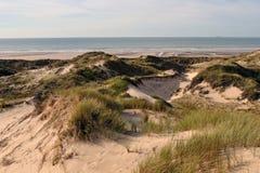 Spiaggia delle dune e flocculo marino di Hardelot Fotografia Stock Libera da Diritti