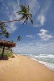 Spiaggia dello Sri Lanka Fotografia Stock Libera da Diritti