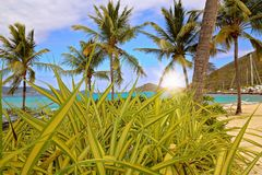 Spiaggia dello zaffiro sull'isola di St Thomas immagine stock libera da diritti