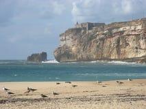 Spiaggia desolata in Nazare al Portogallo Fotografia Stock Libera da Diritti