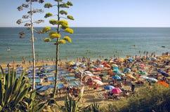 Spiaggia di Algarve Immagini Stock Libere da Diritti