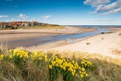 Spiaggia di Alnmouth in primavera Immagini Stock