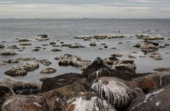 Spiaggia di Altona Fotografie Stock Libere da Diritti