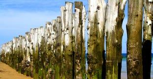 Spiaggia di amore Immagini Stock Libere da Diritti