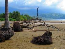 Spiaggia di Ballena Immagini Stock Libere da Diritti