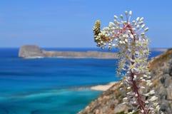 Spiaggia di Balos all'isola del Crete in Grecia Fotografie Stock