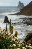 spiaggia di beijo Fotografia Stock