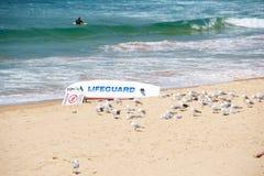 Spiaggia di Bondi Immagine Stock Libera da Diritti