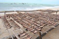 Spiaggia di Caiçara Fotografia Stock Libera da Diritti