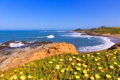 Spiaggia di California Bean Hollow State in Cabrillo Hwy Fotografia Stock