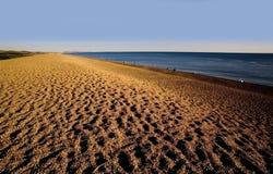 Spiaggia di chesil del litorale dell'Inghilterra Dorset fotografia stock