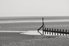 Spiaggia di Cleethorpes Immagini Stock Libere da Diritti